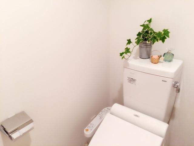 体調や精神面に影響も トイレ風水の基本と方位別トイレマットの色