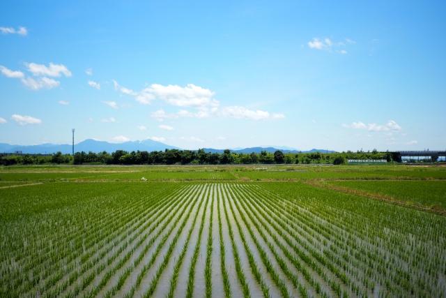 新潟県の県民性 厳しい寒さと雪が忍耐強い性格を形成