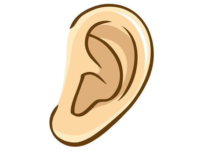 【人相占い】耳の大きさ、形、位置で分かる性格・恋愛